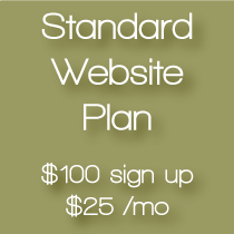 elf-web-design-standard-plan1